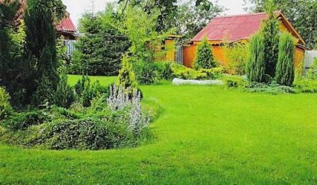 На лужайке возле дома