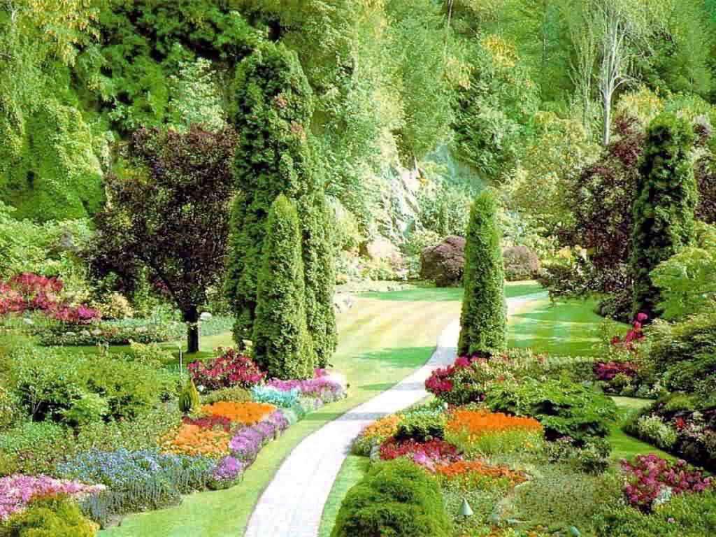Сад и огород статьи